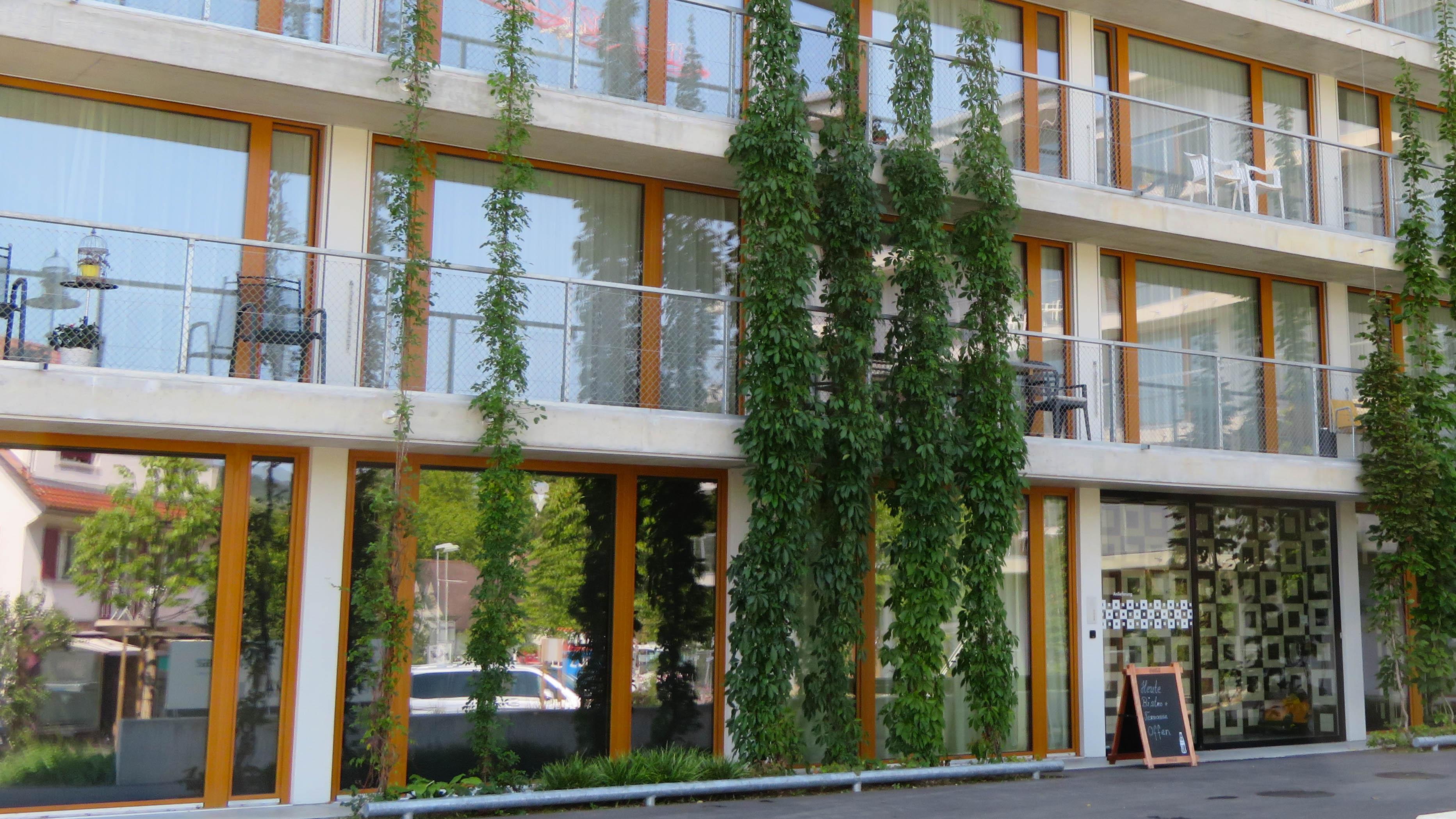 Lindenpark, Windisch
